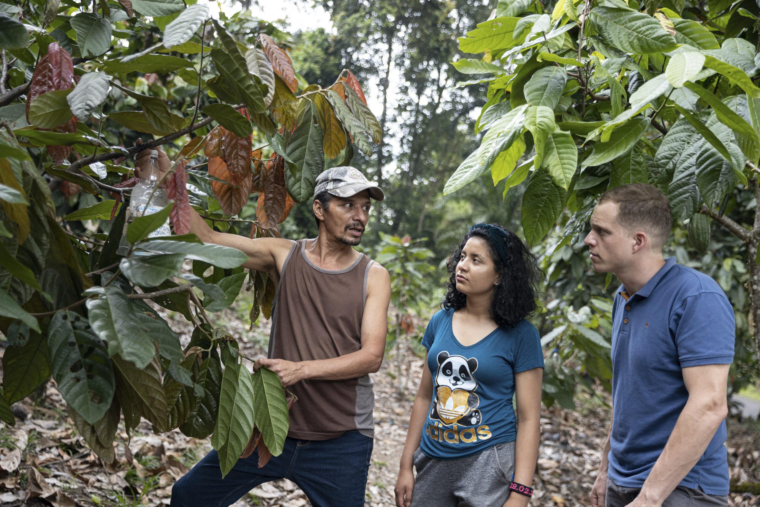 Sécheresses de plus en plus fréquentes, inondations et tempêtes dévastatrices : les familles qui pratiquent l'agriculture et l'élevage dans le nord du Nicaragua, sont gravement menacées par les effets du changement climatique. Ludovic Schorno, agronome et coopérant de Comundo, les aide à développer de nouvelles perspectives et à sécuriser leur alimentation. Ici : La jeune agricultrice Nayeli Larios et son père dans leur ferme de Rancho Grande, avec Ludovic Schorno. Photo : Comundo/Kuba Okon.